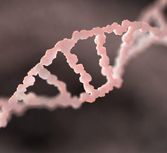 Trisomie, aneuploidie i inne chromosomy – czyli krótka wycieczka po genetyce